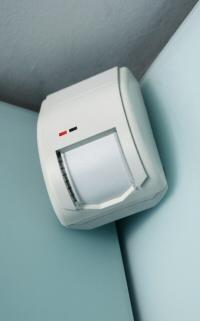 Intruder detector image